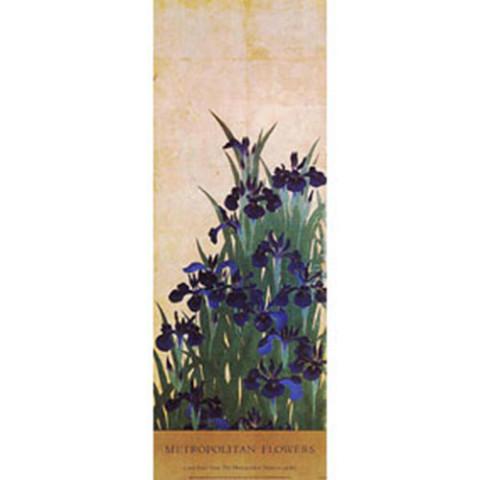 Ogata K_rin: Irises Poster