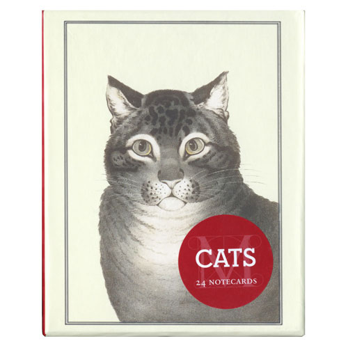 Cats Notecards