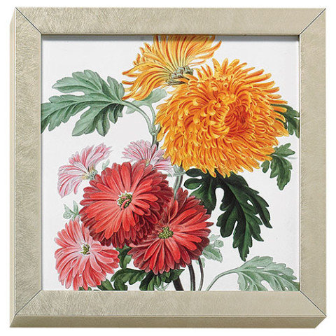 Horticultural Society: Orange and Crimson Chrysanthemums art block