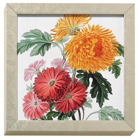 Horticultural Society: Orange and Crimson Chrysanthemums art block