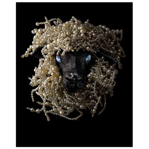 JAR: Sheep's Head Brooch